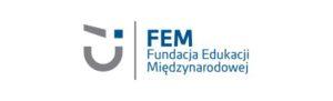 FEM_P_new_small
